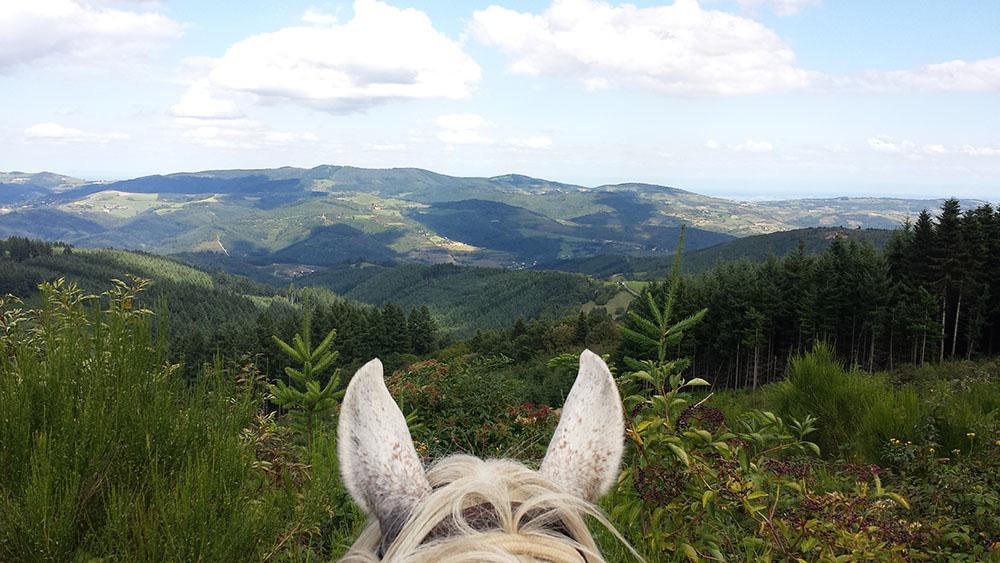 5 gites 5 sites Saint Didier les Ardillats cheval randonnée gpx