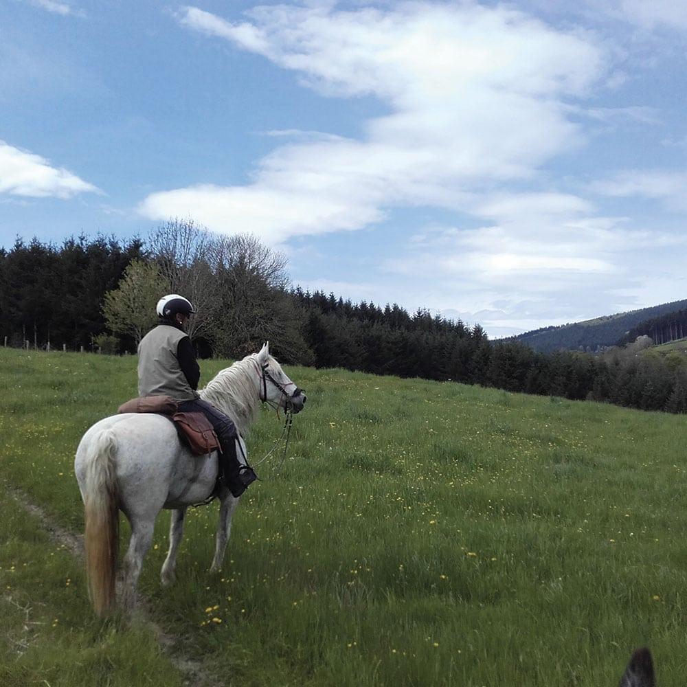5 gites 5 sites en Coteaux Beaujolais cheval randonnée
