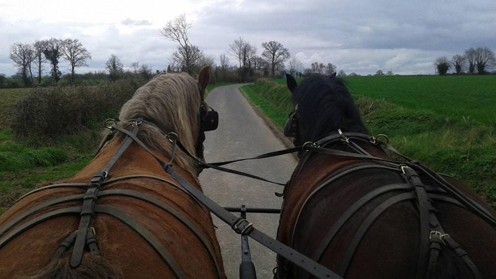 Attelage dans les gorges de la Loire tracé GPX