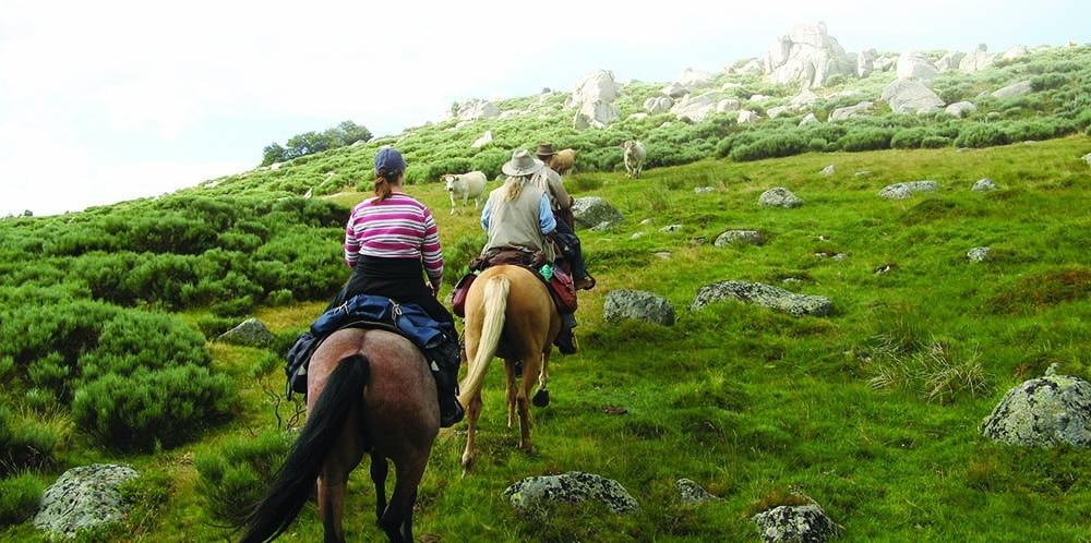 Boucle Dore puy de dome itinéraire cheval gpx