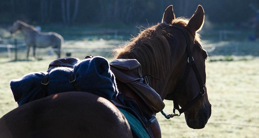 Boucle Propières liaison fichier gpx cheval