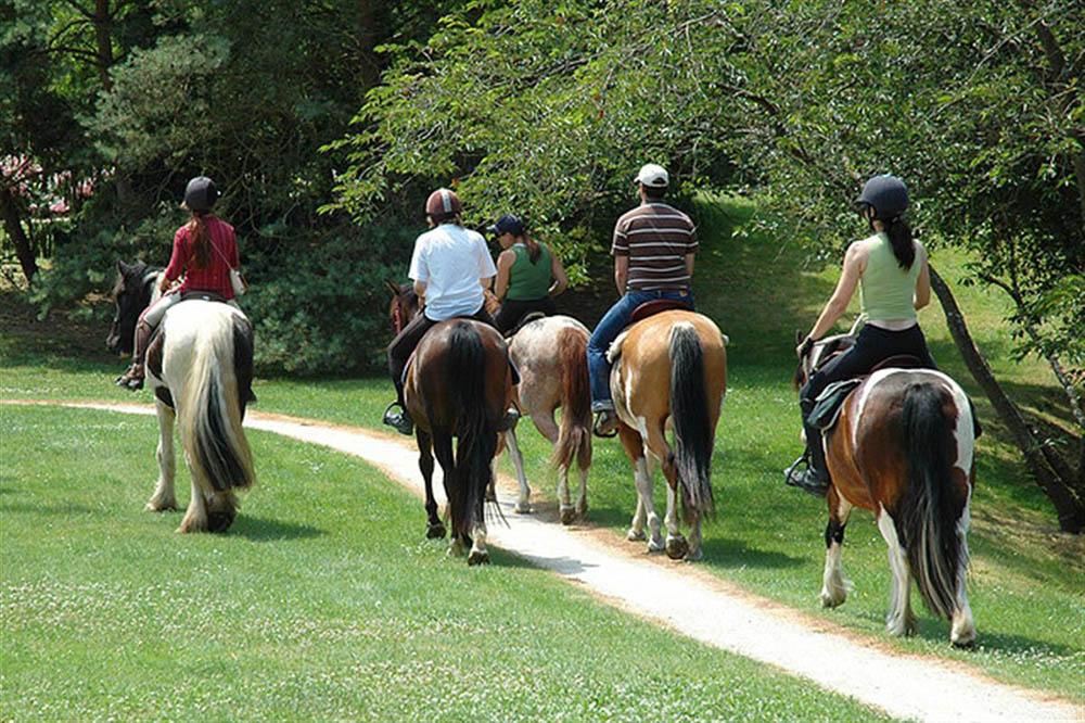 Boucle complète Pierres d'Antan à cheval Loire
