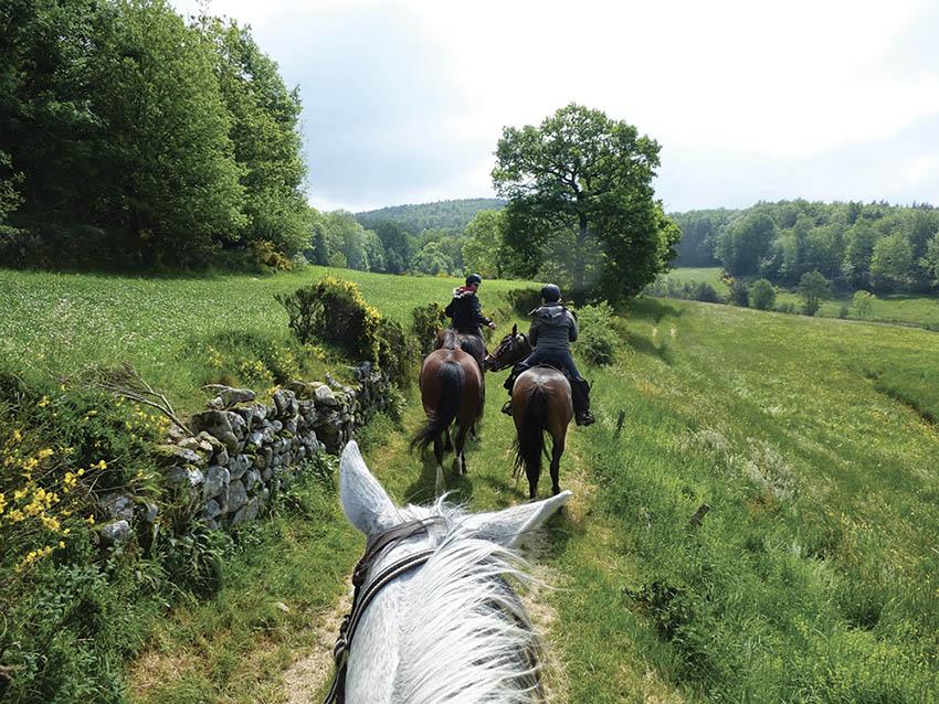 Circuit à cheval du Parc Régional des Monts d'Ardèche