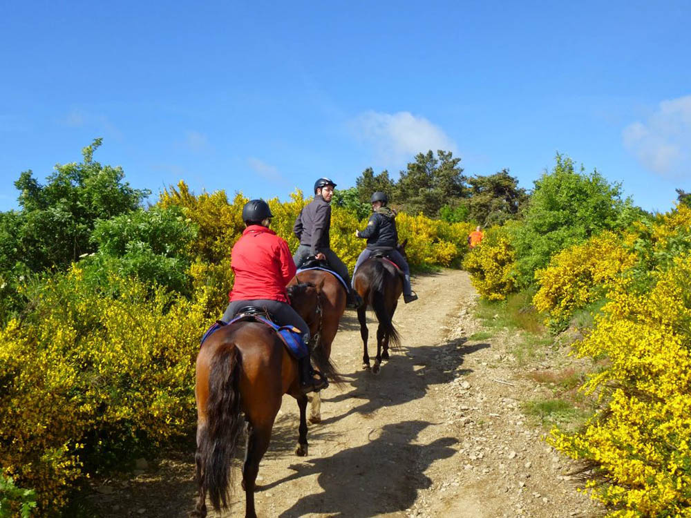 Itinéraire à cheval randonnée gpx Lyon