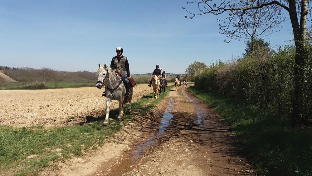 Les Monts du Lyonnais à cheval