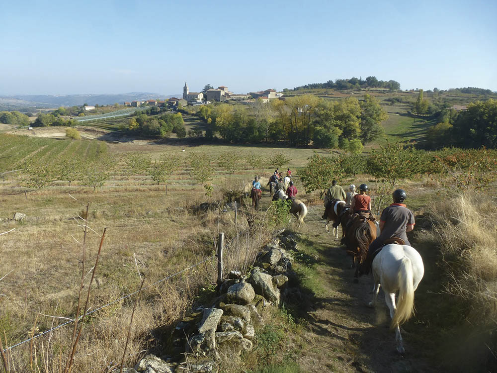 Les Monts du Vivarais Balade à cheval Ardèche