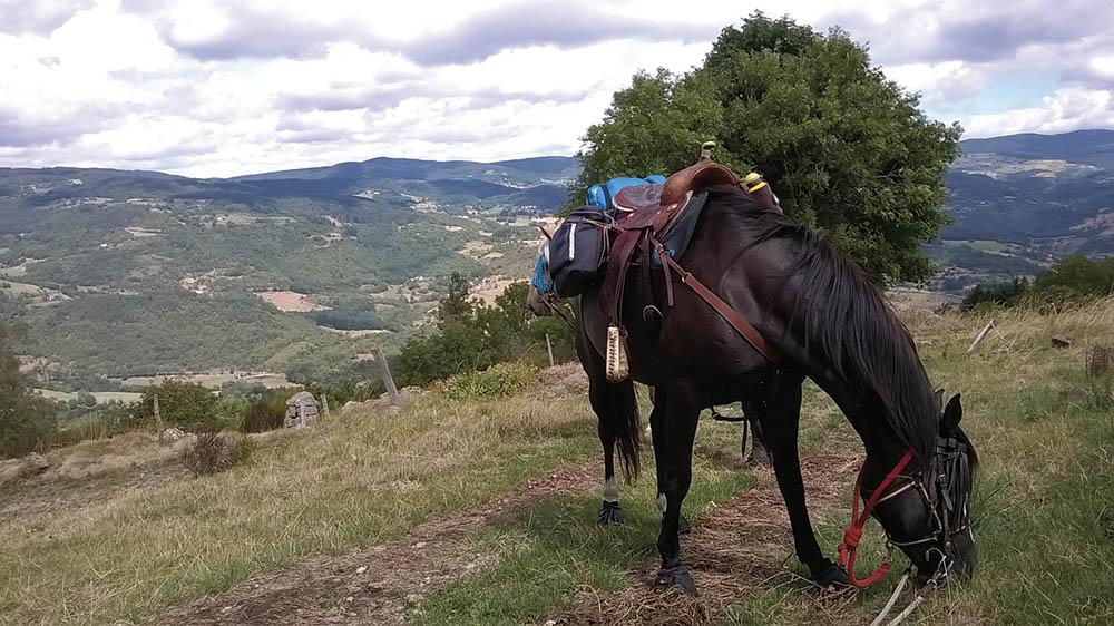 Les Pierres d'Antan Loire itinéraire à cheval