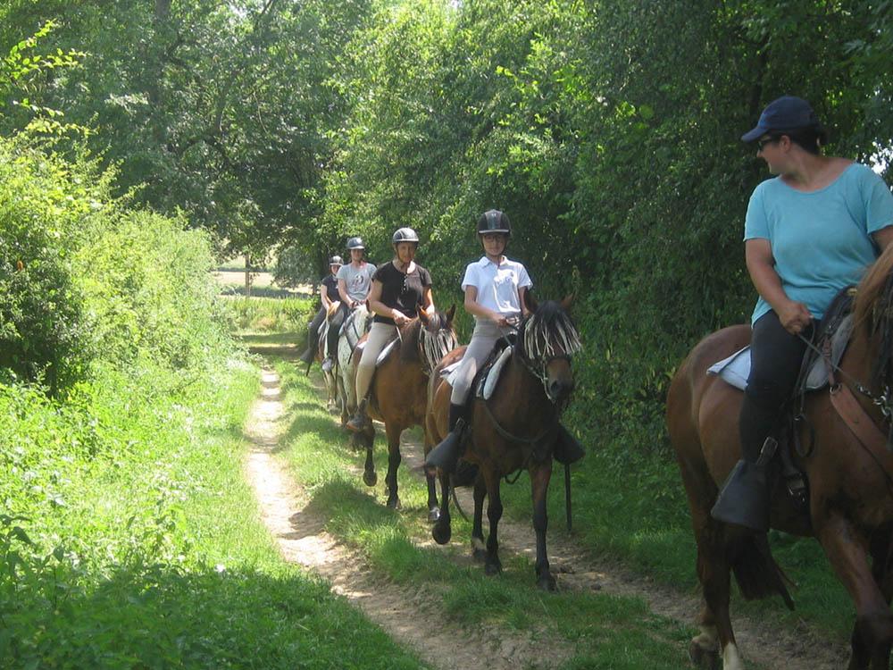 Promenade à cheval dans l'Ouest Beaujolais