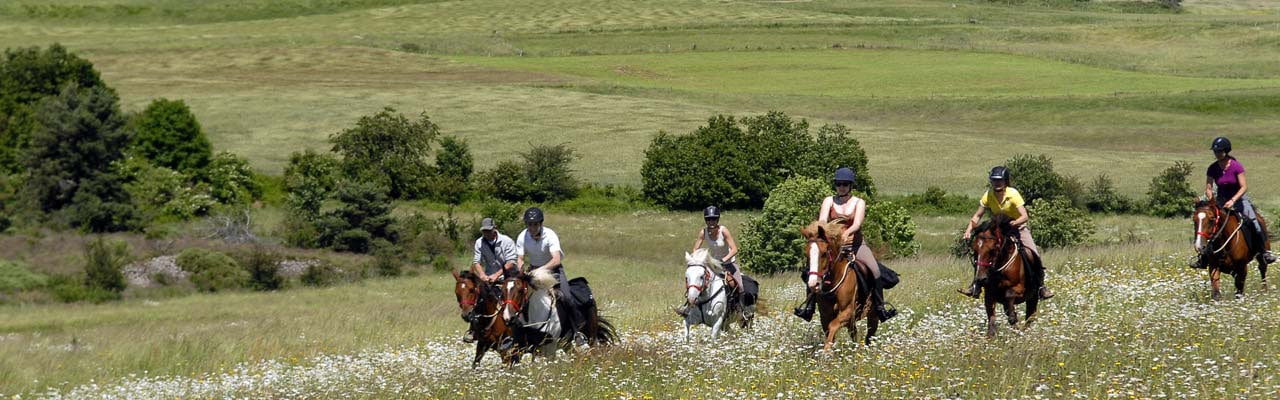 Randonnée à cheval Allier Circuit