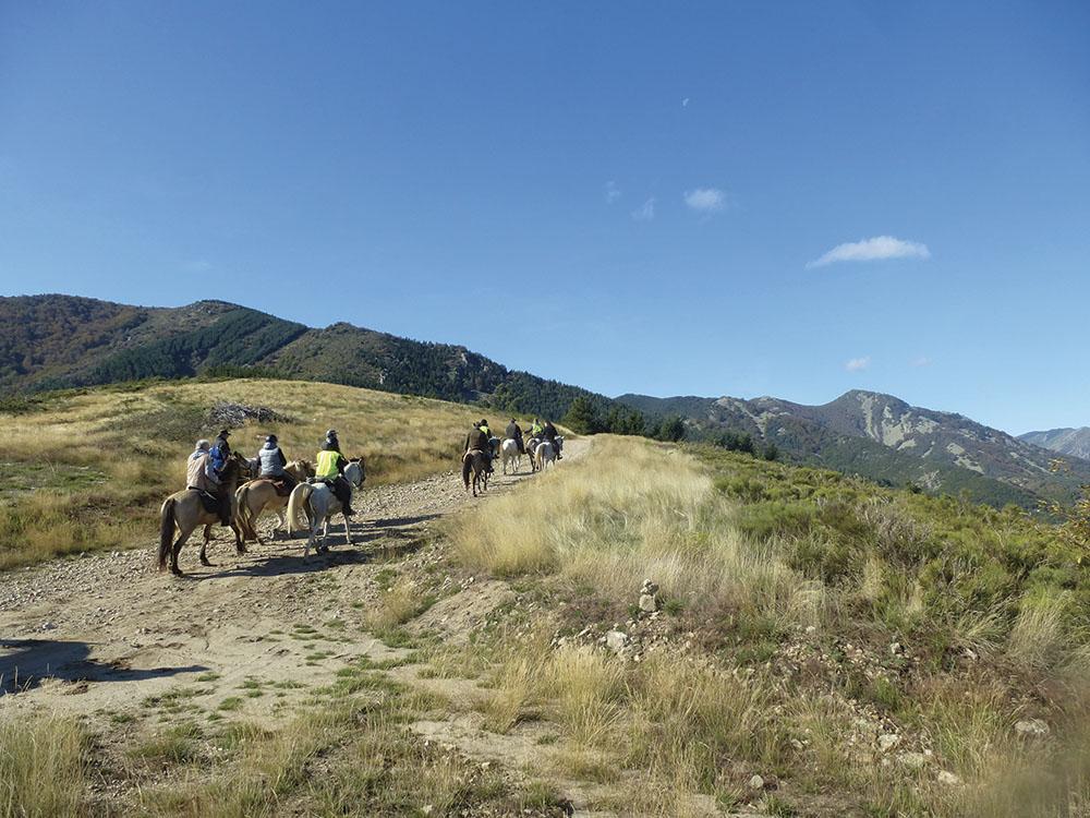 Randonnée à cheval des Cévennes au Tanargue Ardèche