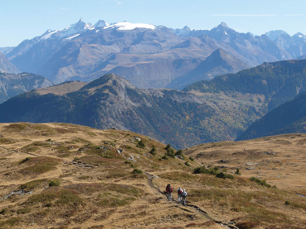 Terre d'Alpage en Mateysine Cheval Randonnée Isère