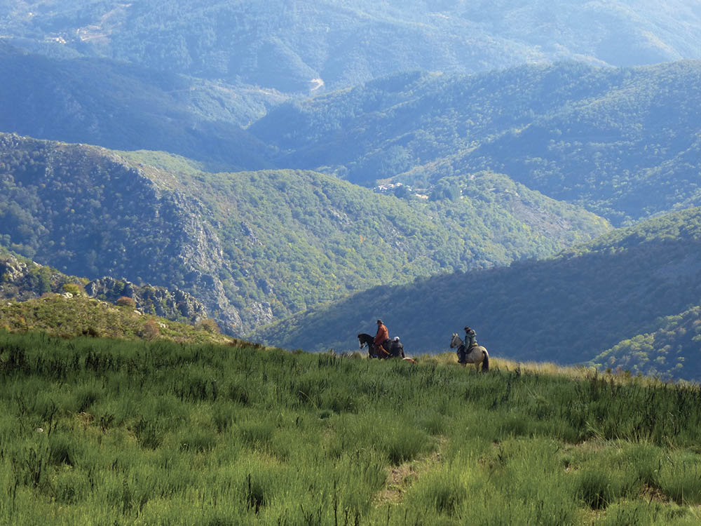 Tracé GPX La montagne Ardéchoise à cheval