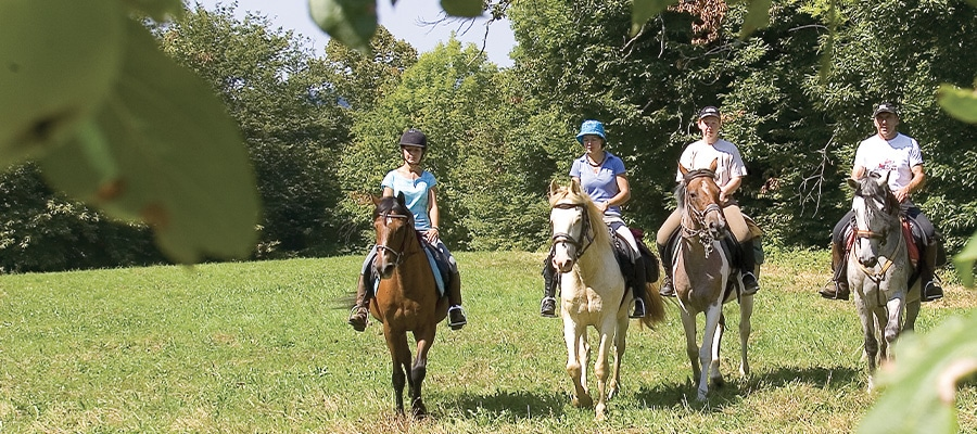 Les 3 rivieres randonnee cheval Allier
