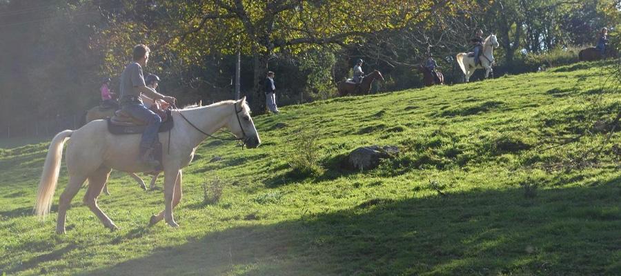 Randier Farm randonnee cheval Allier