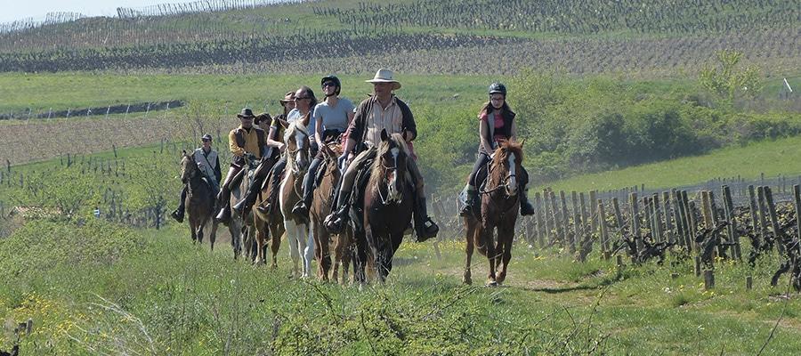 5 gîtes 5 sites en Coteaux Beaujolais circuit a cheval Rhone