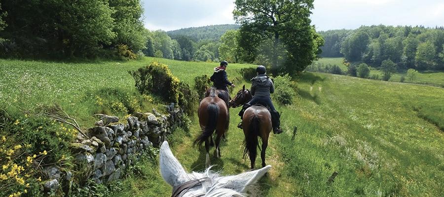 Circuit du Parc Régional des Monts d'Ardèche randonnee cheval