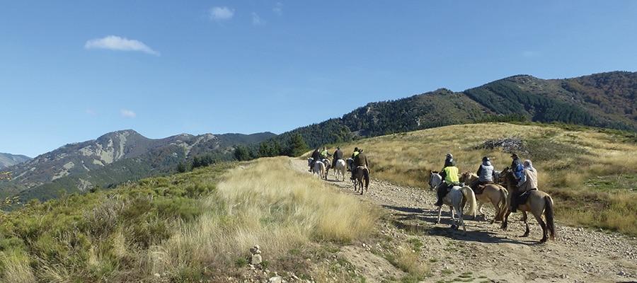 Des Cévennes au Tarnargue randonnee cheval Ardeche