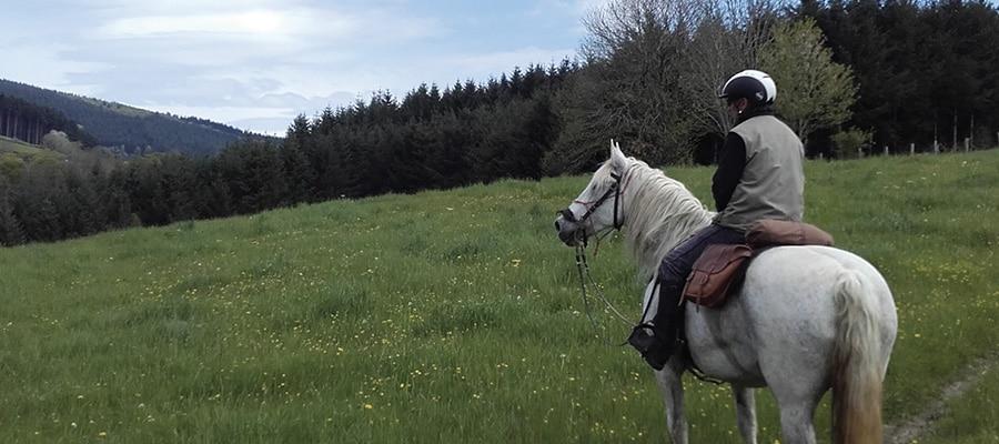 Des Monts du Lyonnais au Pilat circuit a cheval Rhone