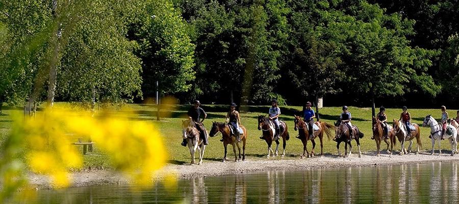Elevage de la Combe randonnee cheval chambre hotes Savoie