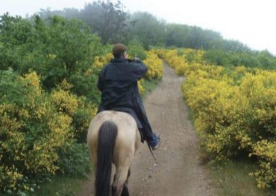 Grande Traversée de l'Ardèche à Cheval (GTAC)