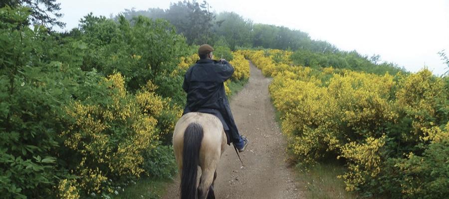 Grande Traversée de l'Ardèche à Cheval (GTAC) circuit a cheval Ardeche