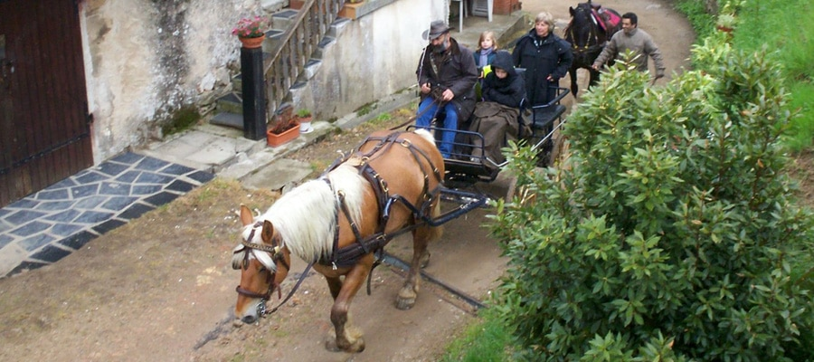 La ferme des razes Alboussiere randonne cheval Ardeche