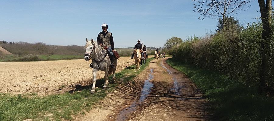 Les Monts du Lyonnais en étoile circuit a cheval Rhone