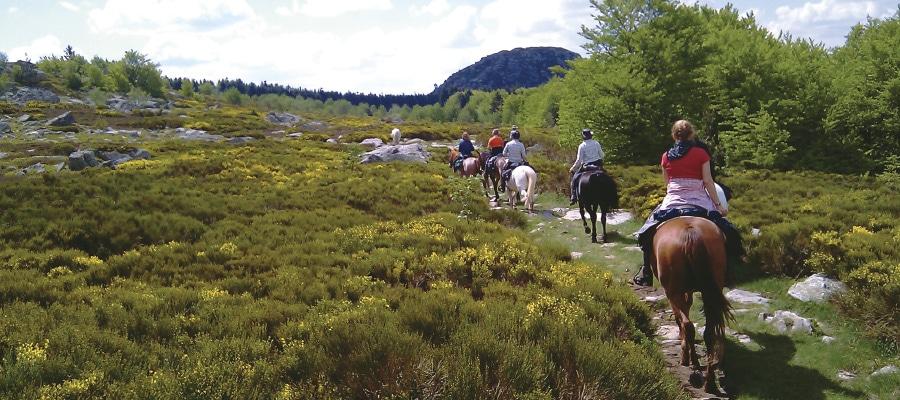 Altigerienne circuit randonnee a cheval Haute Loire