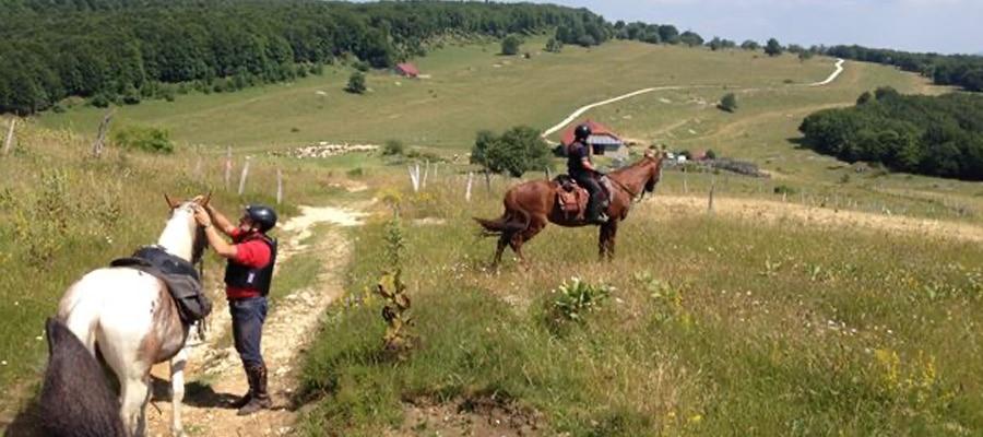 Circuit des Montagnes du Jura et du Pays du Cerdon a cheval Ain