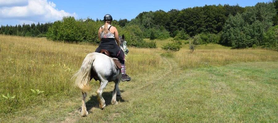 Circuit du plateau du retord randonnee cheval Ain