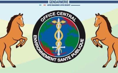 Actes de cruauté sur des équidés : les recommandations de la Gendarmerie nationale