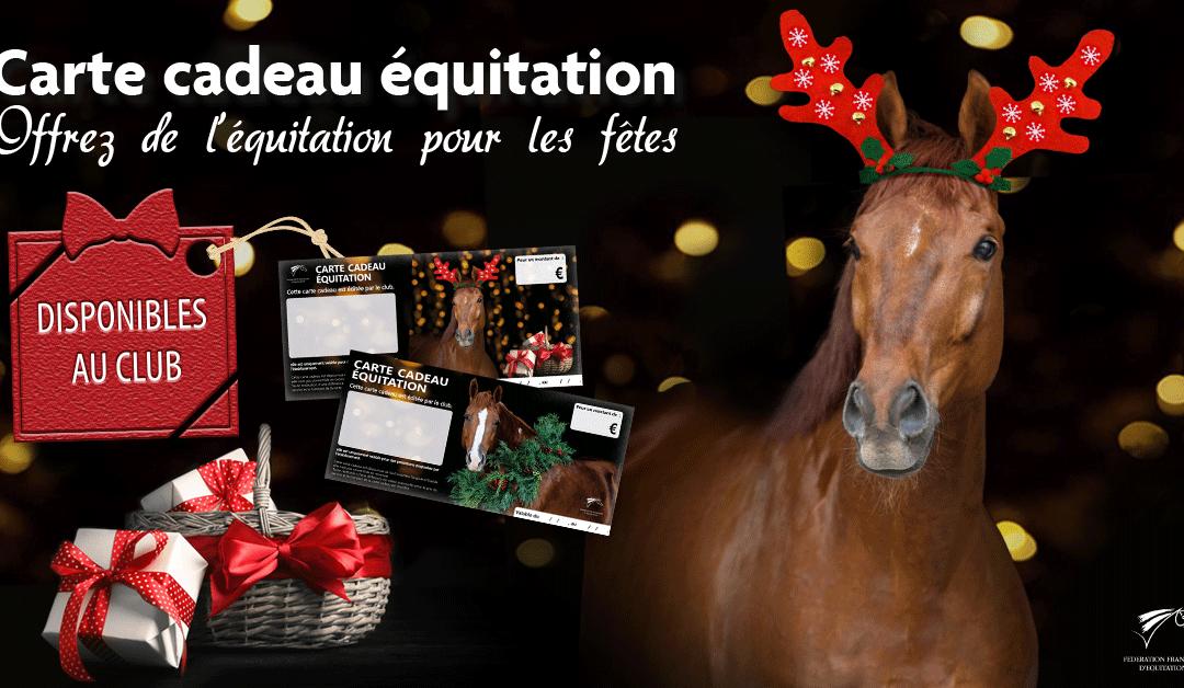 Cette année, mettez de l'équitation sous le sapin !