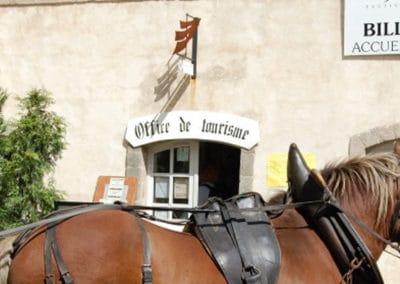 Domaine de la Pénide les écuries de l'Abbaye (chevaux)