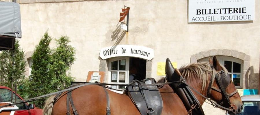 Domaine de la Penide les ecuries de l'Abbaye (chevaux) Boucle Dore Puy de dome