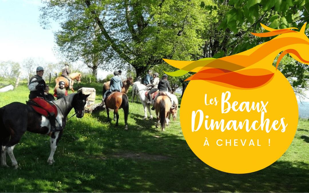 Les Beaux Dimanches à cheval bientôt de retour !