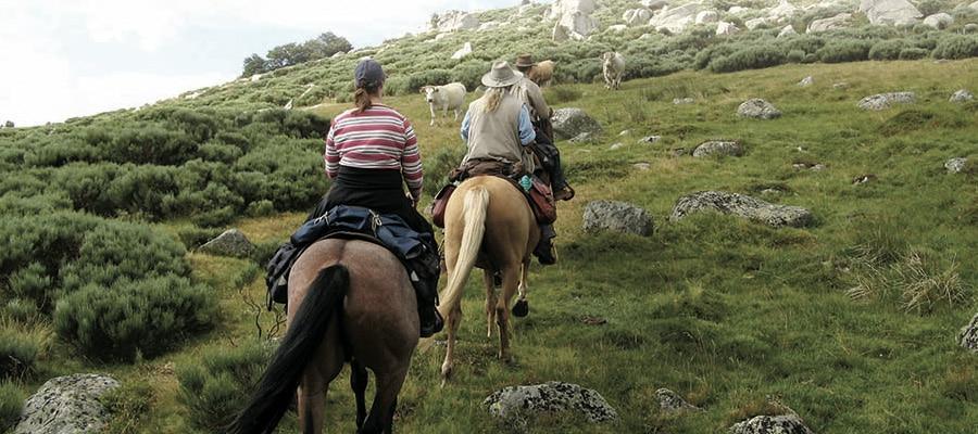 Boucle Dore Puy-de-dome à cheval
